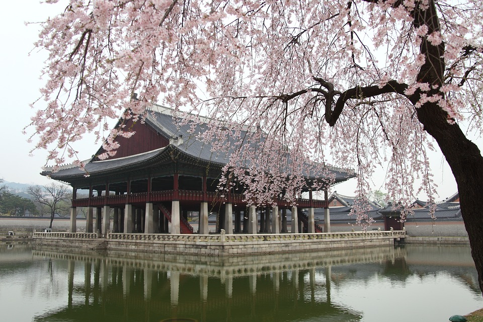 voyage culturel en Corée du sud