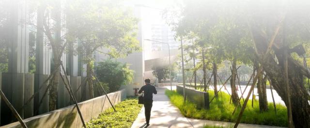 Bâtiment naturel : l'importance de la construction durable